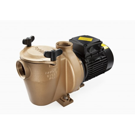 Pumpe 1,1 kw - 1 fas Pahlen bronse med forfilter