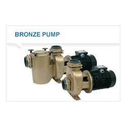 Pumpe 4,0 kw P2000 Pahlen bronse med forfilter